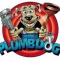 Plumbdog Plumbing & Gas