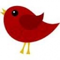 Little Red Bird Natural and Organic Skincare and Beauty Products Australia