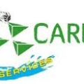 Carrot Carpet Cleaning in Perth WA