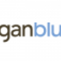 Bergan Blue - Custom Web Design, E-Commerce